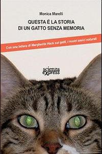 Gatto Senza Memoria