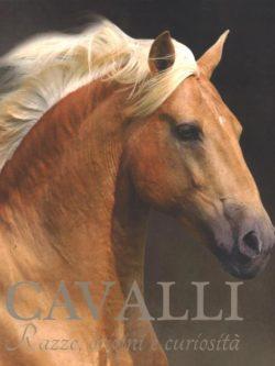 Cavalli (Razze, Origini E Curiosita')